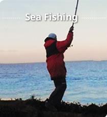 fishing tackle shop - tackleuk, Fishing Rod