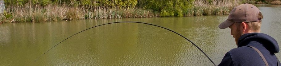 Feeder Fishing Rods