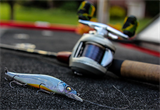 Spinning & Jerk Bait Rods
