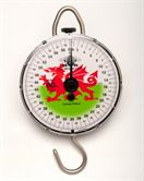 Reuben Heaton Standard Scale LTD Edition WALES 60lb