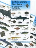 British Inshore Fish Guide Chart