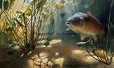 Planet Prints Carp Art - Mystical Common