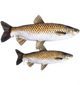 Gaby Grass Carp Pillow