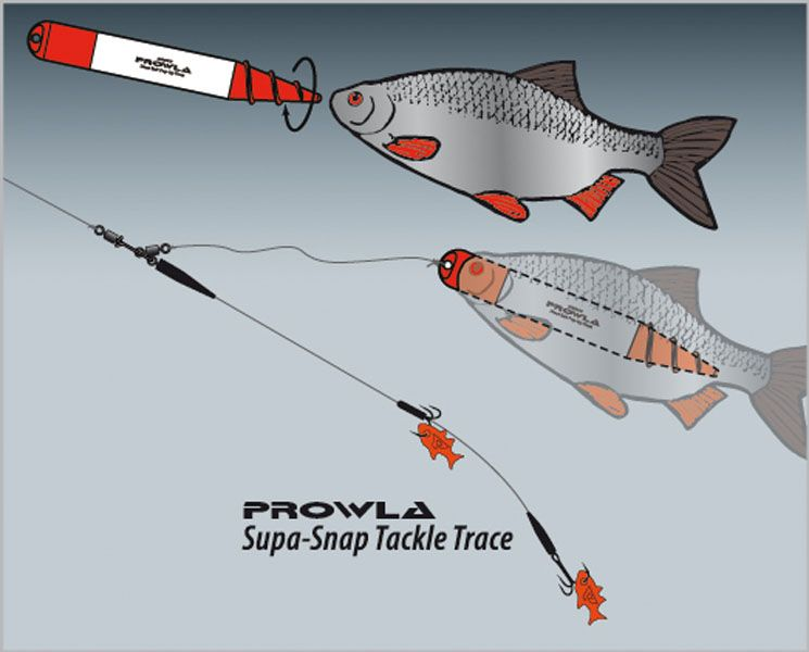 how to catch pike with dead bait