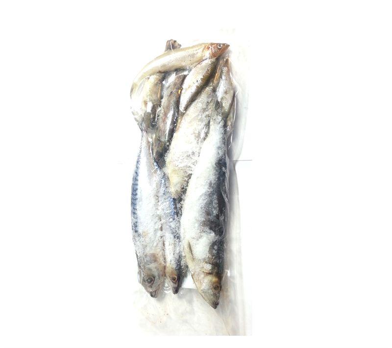 Devon baits frozen pike pack for Frozen fishing pole